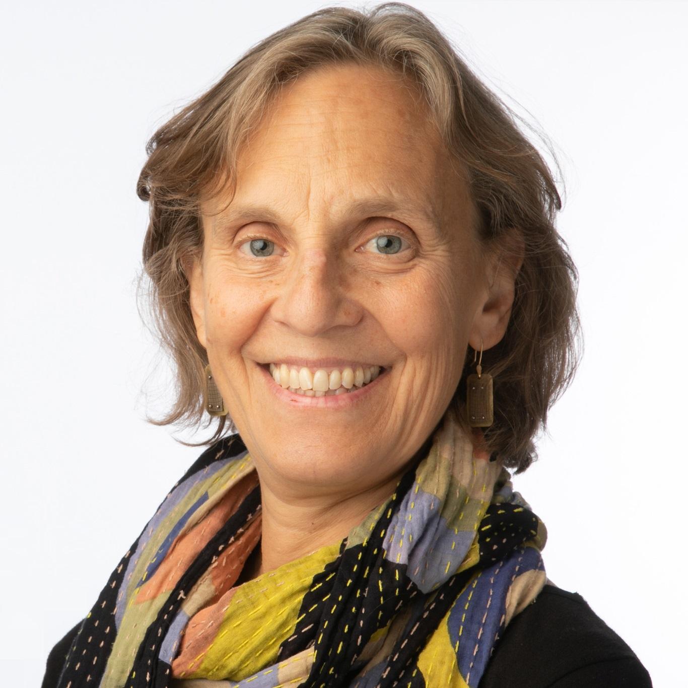 Anita Weinberg, Director, ChildLaw Policy Institute, Loyola University Chicago School of Law