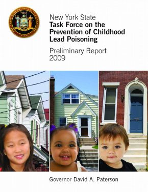New York State Task Force on the Prevention of Childhood Lead Poisoning Preliminary Report 2009