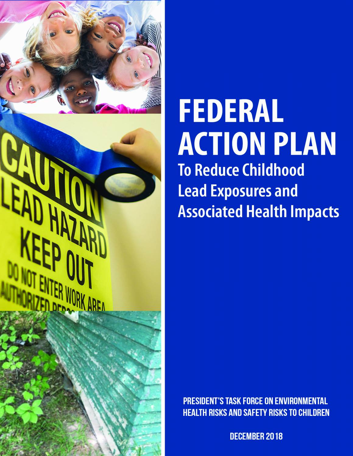 Federal Action Plan to Reduce Childhood Lead Exposures and Associated Health Impacts [2018 Edition]