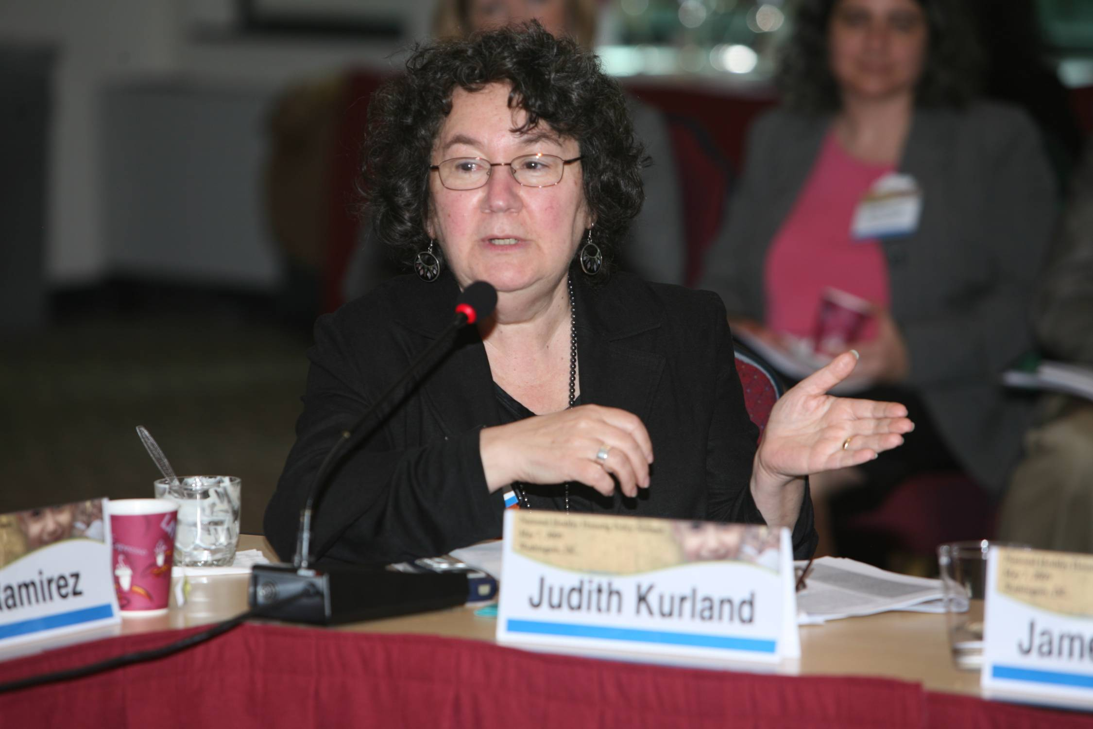 Judith Kurland, NCHH Board and Center for Community Democracy and Democratic Literacy